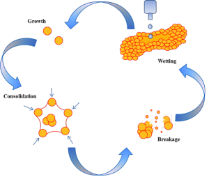 Figure 1. Formation mechanisms of the granules.