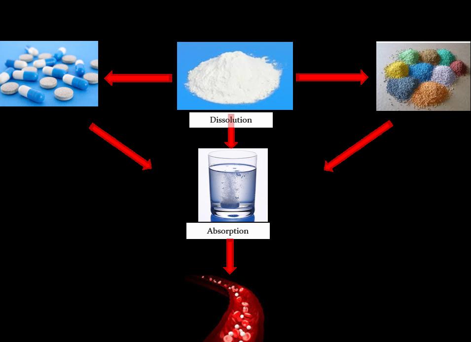 In vitro_en