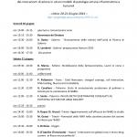 terzo-meeting-prin_pagina_1