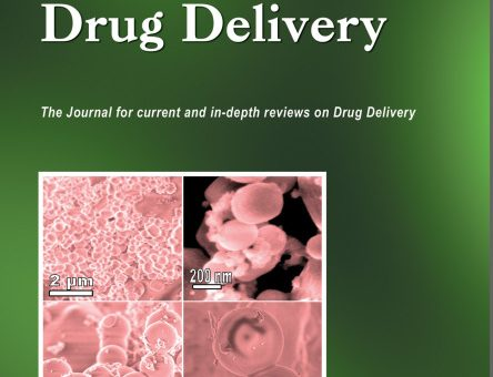New Trends in Gene Therapy: Multidisciplinary Approaches to siRNAs Controlled Delivery